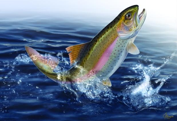 fish-painting
