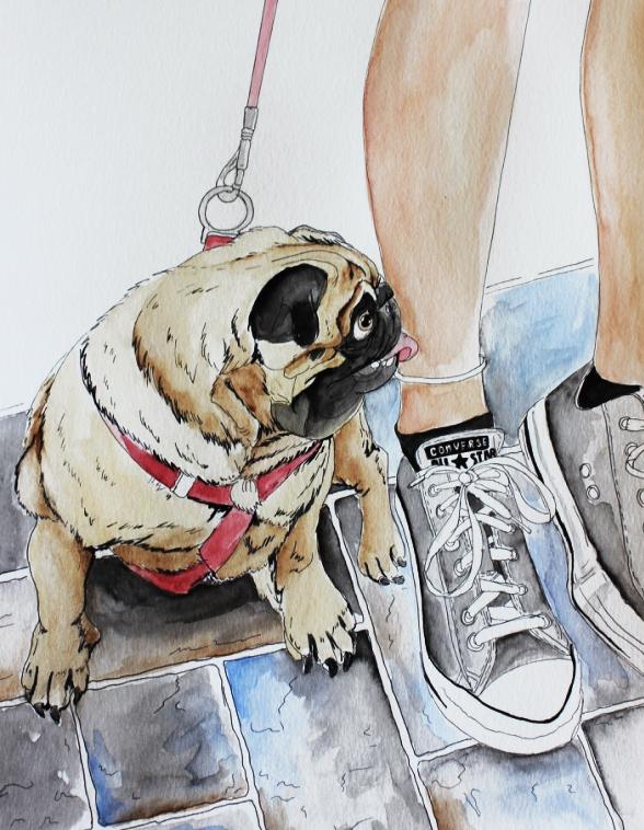 pug-and-converse